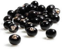 acai-weight-loss